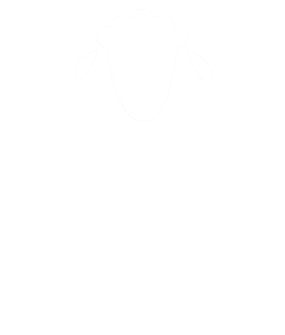Lucky Sheep